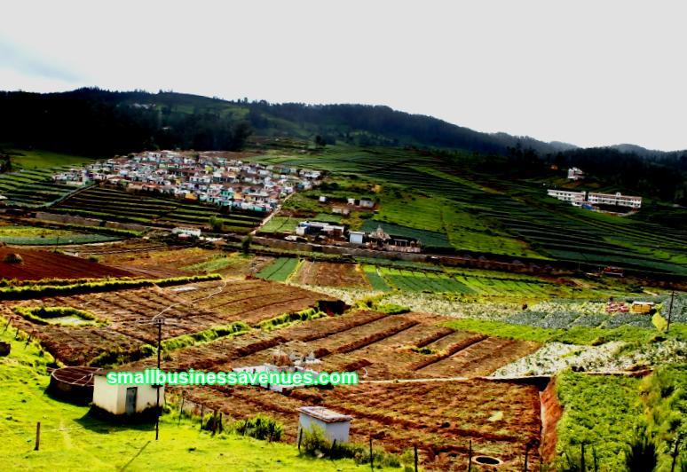 Perniagaan di kampung dari awal: pilihan menjana pendapatan