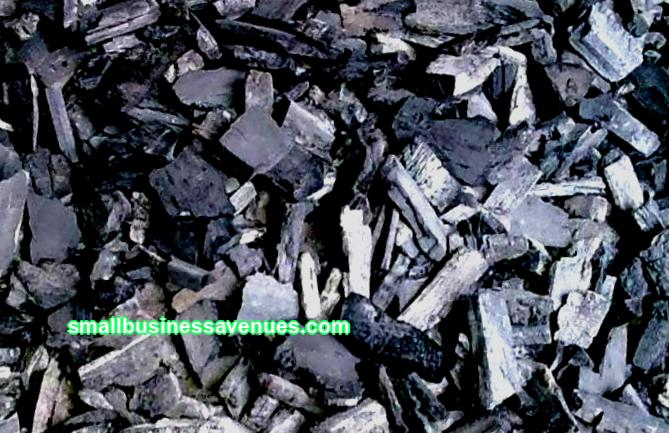 Charcoal production: business plan and technology