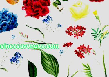 Kukka-liiketoiminta; verkkokukkakauppa