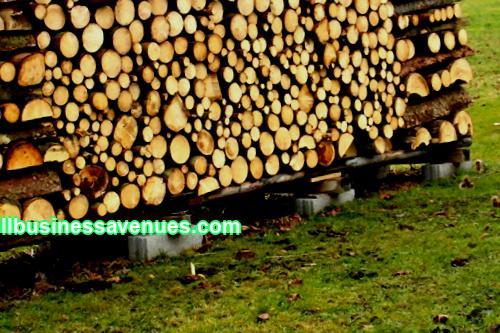 Business idea: procurement and sale of firewood