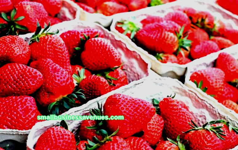 Strawberry business: where to start, profitability, reviews