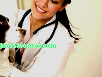 Veterinary clinic business plan