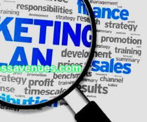 Writing a business plan: marketing plan