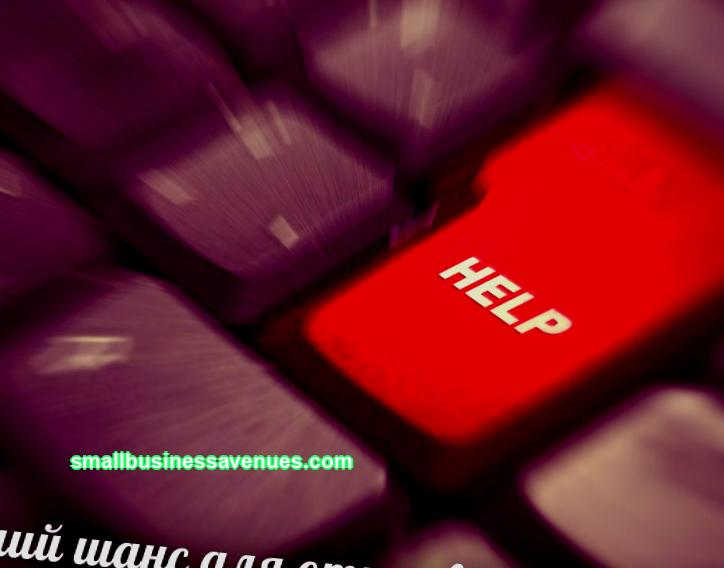 There are many ideas for business projects on the Internet, but not every one of them is capable of forming into a profitable business. In this regard, I found 7 new business ideas for you.