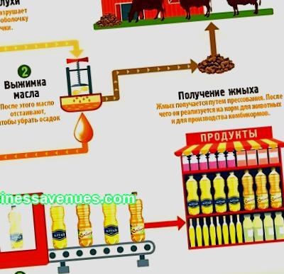 ผลิตน้ำมันพืช: เทคโนโลยีและอุปกรณ์