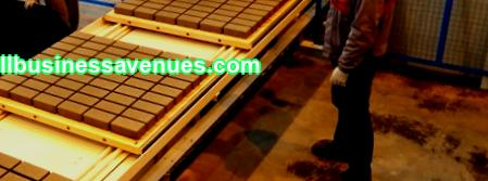Advantages and disadvantages of such a business. What types of paving slabs can be produced. How to set up production. Total costs and revenues of the project.