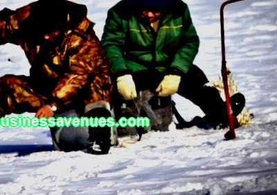 In winter, you can even make money on snow, which is very expensive to clean and transport. What other seasonal business ideas will bring good income.