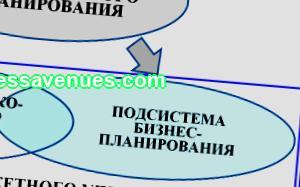 Marketing, advertising and trade Business planning abstract Russian Natalia Rakova 21.1.004